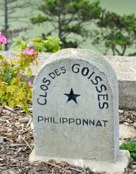 ingresso Philipponnat Clos Des Goisses