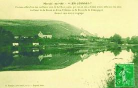 foto del Clos des Goisses, profilo che sempre una bottiglia di champagne