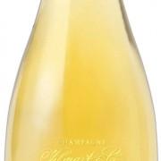 bottoglia champagne vilmart