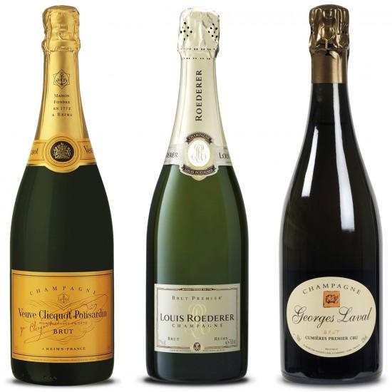 bottiglie consigliate per uno champagne intorno ai 30/40 euro