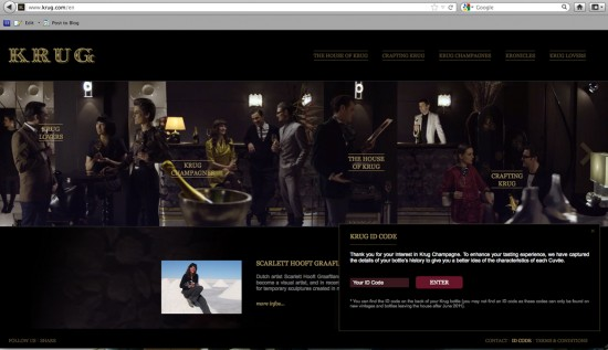 schermata sito web krug