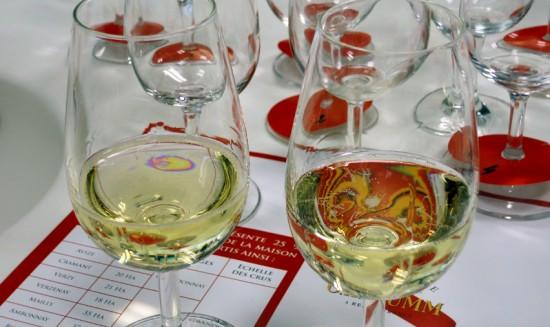 assaggio di vins clairs e vins de réserve