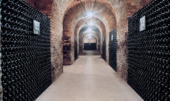 cantina Deutz con bottiglie di champagne