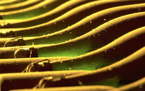 bottiglie champagne bollinger sui lieviti