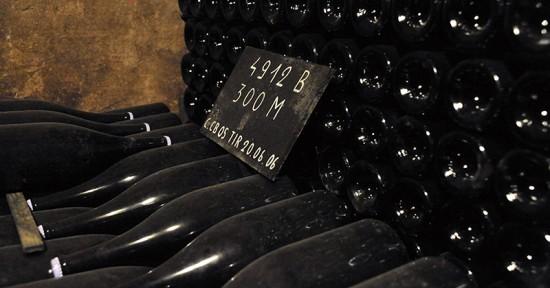 bottiglie champagne in cantina