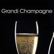 Guida grandi champagne