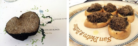 abbinamento tartufi e champagne