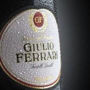Giulio Ferrari Riserva del Fondatore 2004
