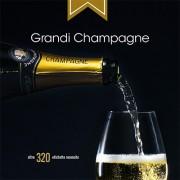 Guida Grandi Champagne edizione 2016-17
