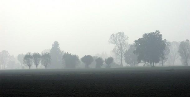 Panorama emiliano