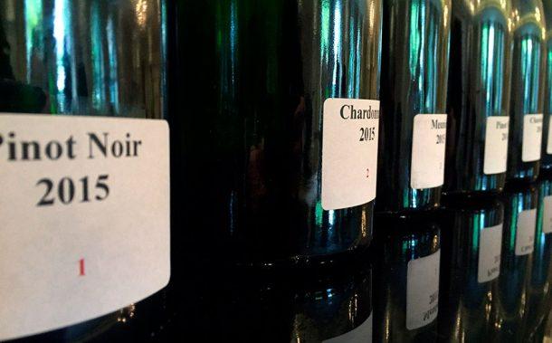 Bottiglie per assemblaggio champagne