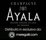 banner Ayala