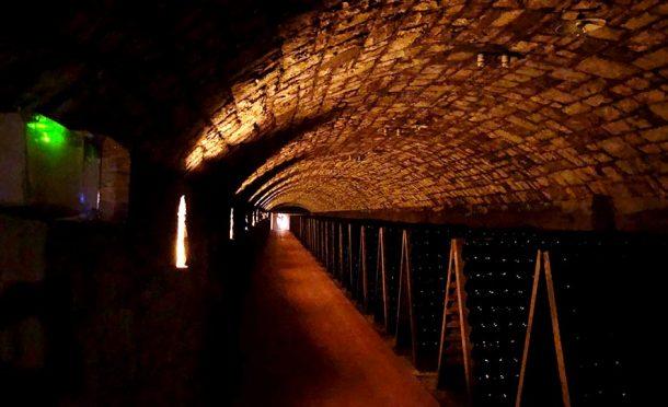 cantine sotterranee di Ca' di Bosco