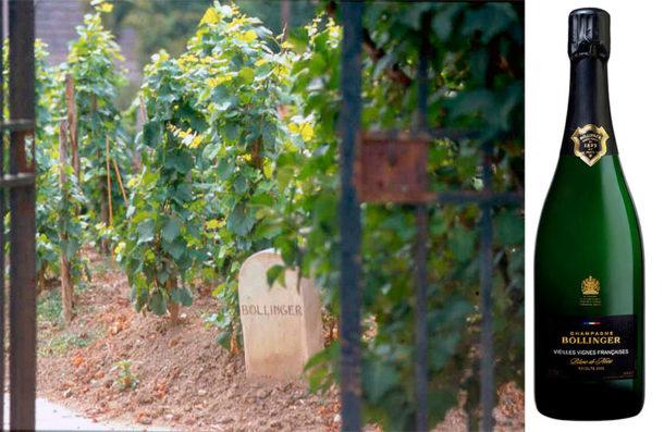 Vieilles Vignes Françaises