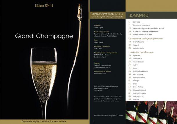 guida champagne 2014