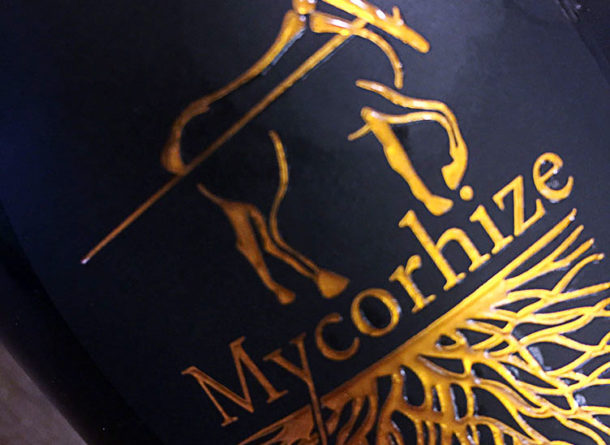 Degustazione champagne De Sousa Mycorhize