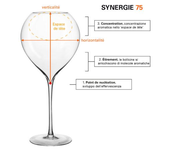 lehmann synergie  Bicchieri Champagne Lehmann-Jamesse. Bicchiere Ufficiale Guida ...