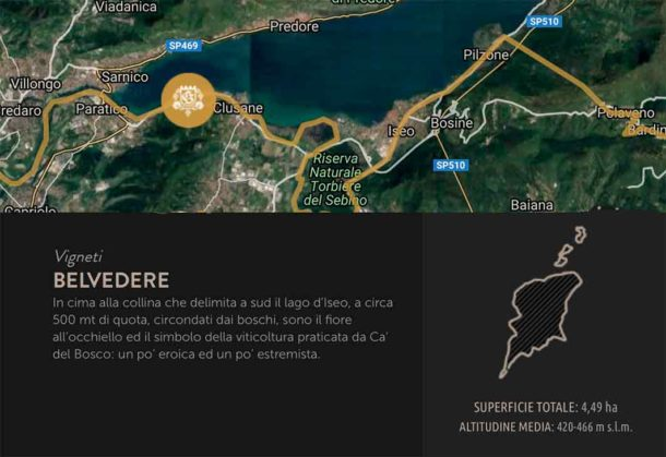 Mappa vigneti Belvedere